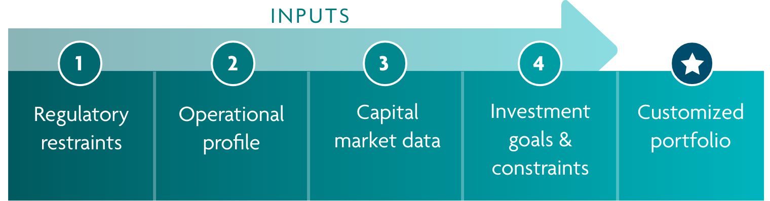 Graphic showing the input required for a customized portfolio: 1. regulatory restraints, operational profile, capital market, data, investment goals and constraints, customized portfolio